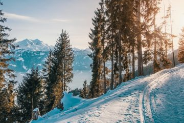 TOP 5 Plus grand domaine skiable France