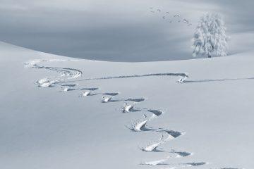 ouverture station ski hiver 2019 2020 ski moins cher skimoinscher